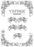 Vintage borders. Vector retro  elements  at old engraving style. n Stock Image