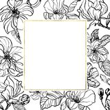 Vintage botanical hand drawn ink illustration with spring apple or cherry blossom. Gentle inked flowers with gold geometric frame. On white background. Forc vector illustration