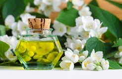 Vintage bottle with cosmetic/massage jasmine aroma oil tincture, essential oil, extract, infusion, perfume. Jasmine blossom flowers background. Copy space royalty free stock image