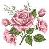 Vintage bouquet Stock Images