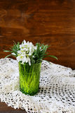 Vintage bouquet of snowdrops Stock Image