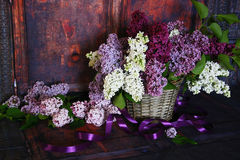 Vintage Bouquet of summer lilac flowers Stock Photography