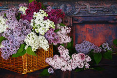 Vintage Bouquet of summer lilac flowers Royalty Free Stock Photos