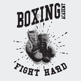 Vintage Boxing Gloves Vector Illustration Stock Photo