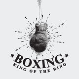 Vintage Boxing Gloves Vector Illustration Stock Photos