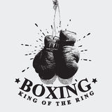 Vintage Boxing Gloves Vector Illustration Royalty Free Stock Photos