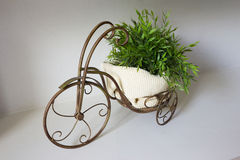 Vintage brass bicycle for decorate Stock Photography