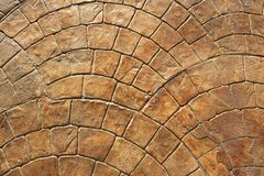 Circle pattern brick floor, real brick construction for interior design or backdrop.n stock images