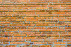 Vintage brick wall Royalty Free Stock Images