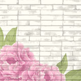 Vintage bricks background with peonies Royalty Free Stock Images