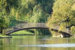 Vintage Bridge Over Lake stock image