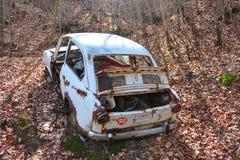 Vintage broken car in a forest stock image