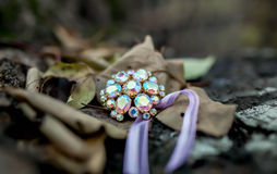 Vintage brooch. Vintage multicolored brooch  on the autumn fallen leaves Royalty Free Stock Photo