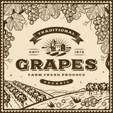 Vintage brown grapes label Stock Photos