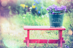 Free Vintage Bucket With Garden Flowers On Red Little Stool Over Summer Nature Background Royalty Free Stock Image - 55976286