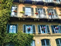 Vintage building and nature in Turin city. Plants, flowers, balcony, windows and beauty. Vintage building in Turin city. Colours, beauty and fairytale, balcony royalty free stock photos