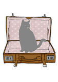 Cat an Suitcase vintage Stock Image