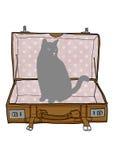 Cat an Suitcase vintage Stock Image