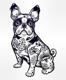 Vintage bulldog or pug decorated in flash tattoos. Royalty Free Stock Image