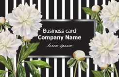 Vintage Business card with white peony flowers on striped background. Vector realistic floral decor, 3d illustrations. Vintage Business card with white peony royalty free illustration