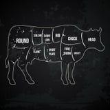Vintage butcher cuts of beef menu chalk vector Royalty Free Stock Photos