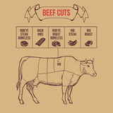 Vintage butcher cuts of beef scheme vector Royalty Free Stock Photo