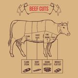 Vintage butcher cuts of beef scheme vector Royalty Free Stock Images