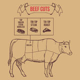 Vintage butcher cuts of beef scheme vector Royalty Free Stock Photography