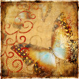 Vintage butterfly Stock Photography