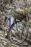 Old bycicle on a wall. Vintage bycicle standing on a wall Royalty Free Stock Images