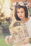 Vintage cage full of butterflies Royalty Free Stock Photo
