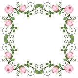 Vintage calligraphic frame with pink roses. Vector Stock Photo