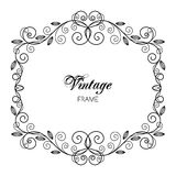 Vintage calligraphy frame Royalty Free Stock Image