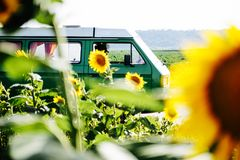 A camper van in a sunflower field. A vintage camper van in a sunflower field Royalty Free Stock Photography