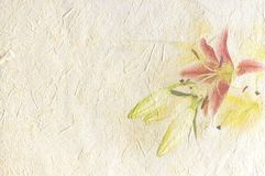 Vintage canvas background. With flowers on recycled paper Royalty Free Stock Images
