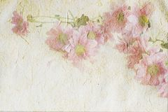 Vintage canvas background Stock Images