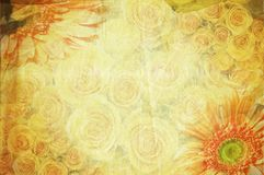 Vintage canvas background Royalty Free Stock Photo
