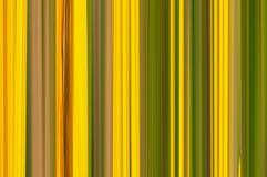 Vintage canvas background wide stripes vertical gradient pattern. Vintage canvas background wide stripes yellow green vertical gradient pattern Royalty Free Stock Images