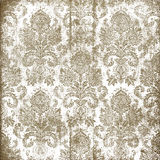 Vintage canvas ornament background Royalty Free Stock Images
