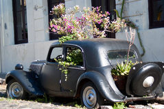 Vintage car in Colonia del Sacramento. One of the landmarks in Colonia del Sacramento royalty free stock photography