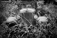 Vintage Car Decaying in Weeds stock photos