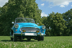 Vintage car in park Royalty Free Stock Photo