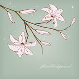 Vintage card with abstract lily flowers Stock Photo