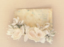 Vintage card royalty free stock images