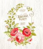 Vintage card background. Royalty Free Stock Photos