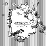 Vintage Card with Birch Twigs and Bird Tit Stock Photo