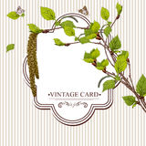 Vintage Card with Birch Twigs Stock Photo