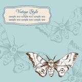 Vintage card with butterflies Royalty Free Stock Photography