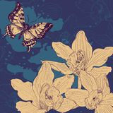 Vintage card with butterfliy and orchids Royalty Free Stock Image