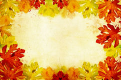 Vintage card with colorful autumn leaves Stock Images